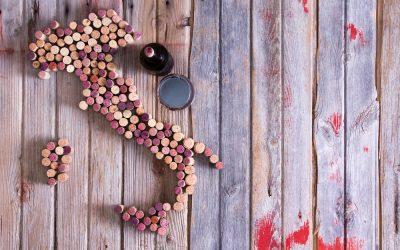 Werden Sie zum Weinprofi mit den Weinen Italien – Freitag 23.Februar 2018